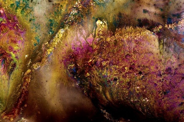 """Photographs Modified Bacteria - geipelberlin | ello"