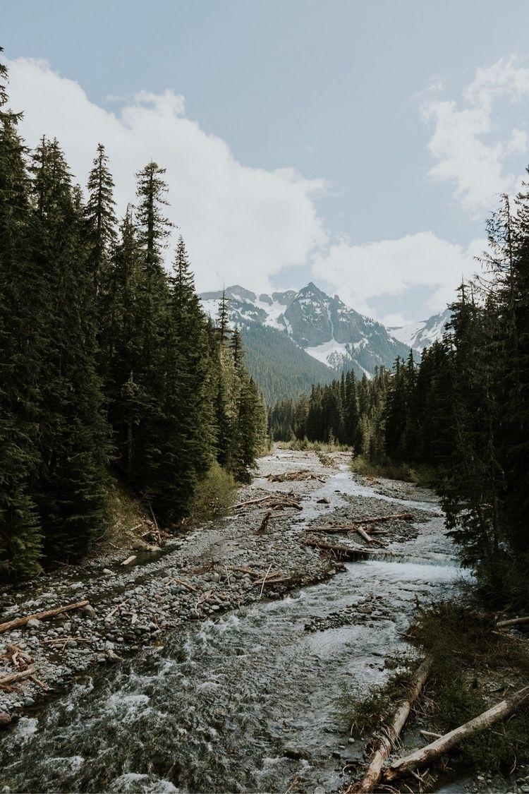 Mt Rainer // WA - ElloPhotographer - jakewongers | ello