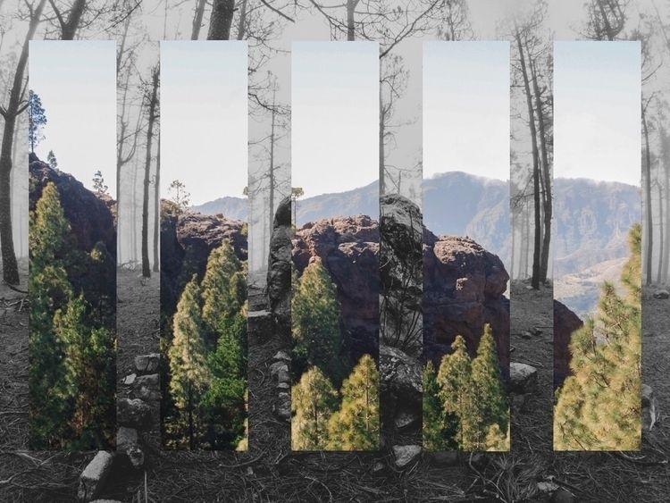 landscape, bw, color, green, rock - aleibanezvega | ello