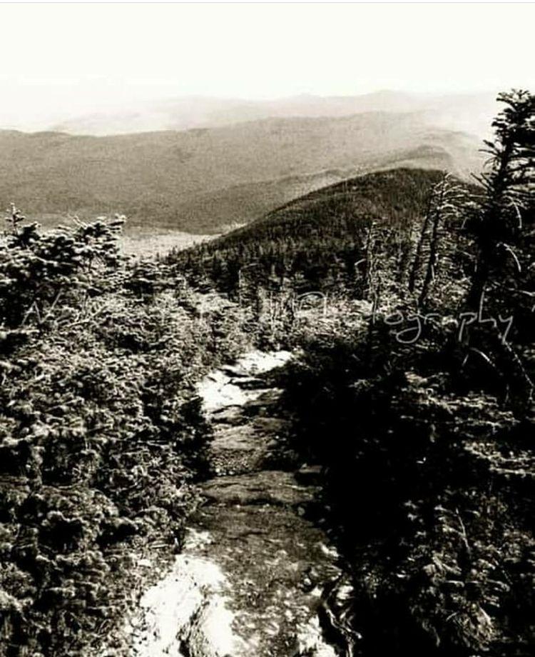 ~Happy National Trail Day~ hike - natureisfree   ello