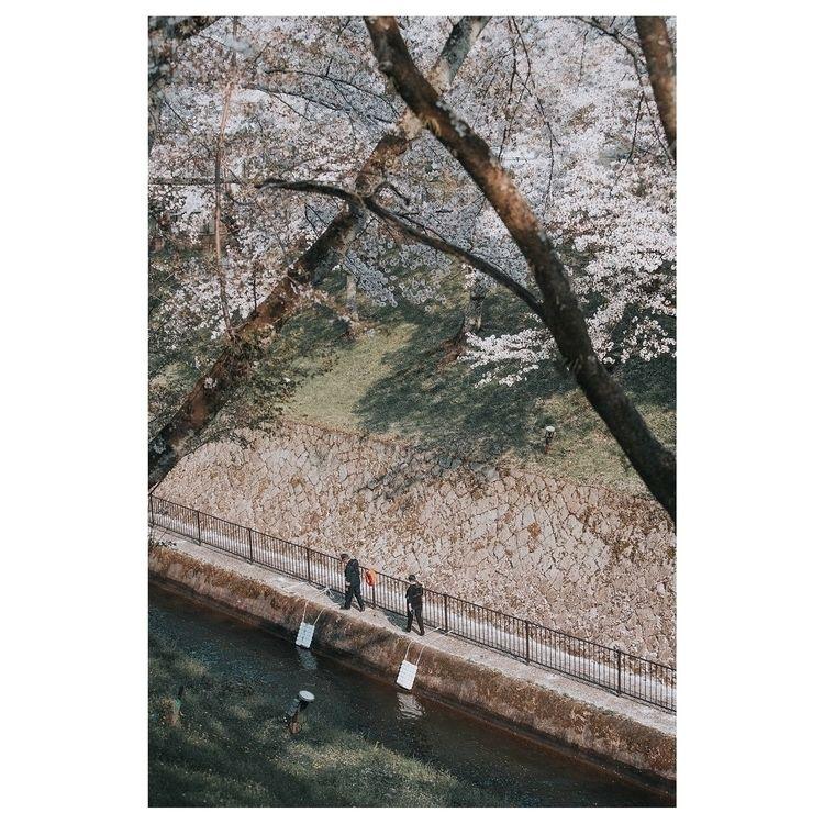 Spring - swei_ | ello