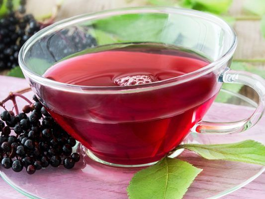 Elderberry tea beneficial boost - buildablend | ello