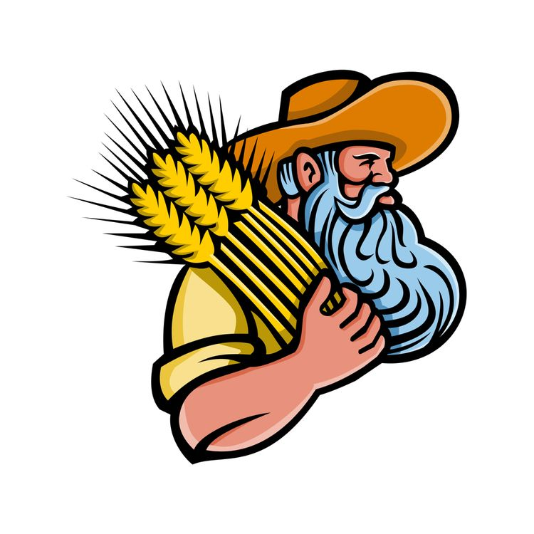 Wheat Grain Farmer Beard Mascot - patrimonio | ello