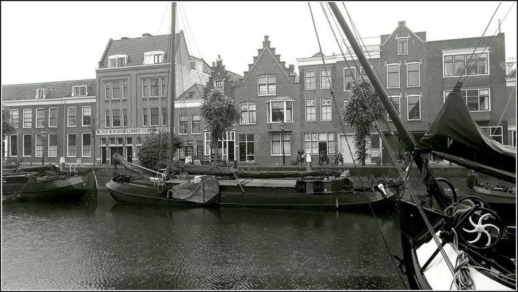 Rain Good Rotterdam - bedenkt | ello
