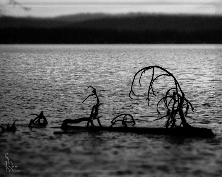 payette.lake - idaho, blackandwhite - jwsubastra | ello