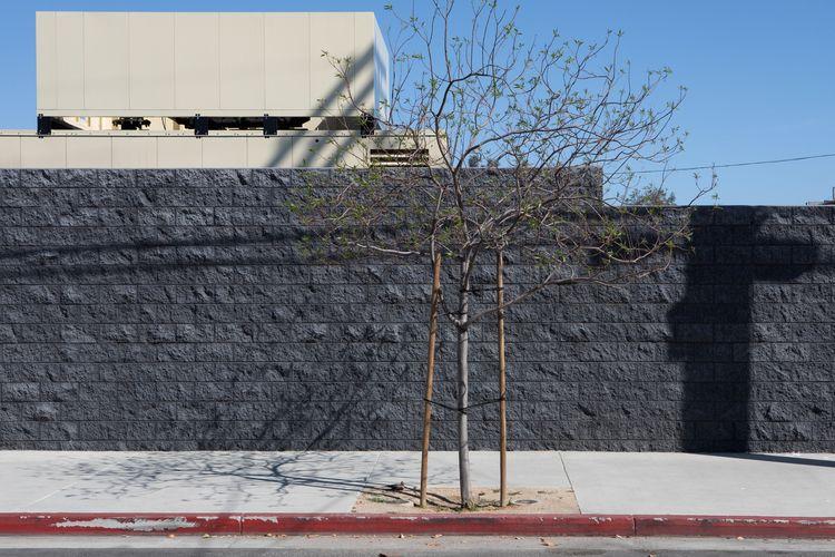 Cinderblock Wall, LAPD Station - odouglas | ello