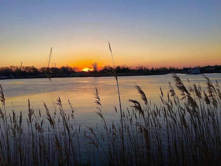 Cape Fear River ~2017 _ Wilming - wellcaldmax | ello