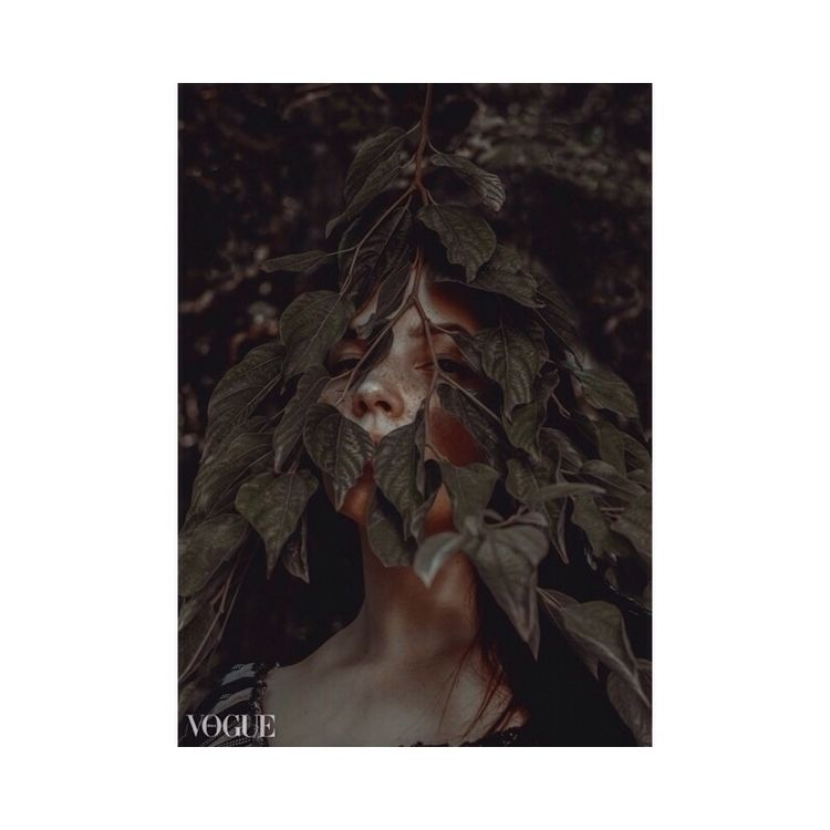 Woods - mathiusto | ello