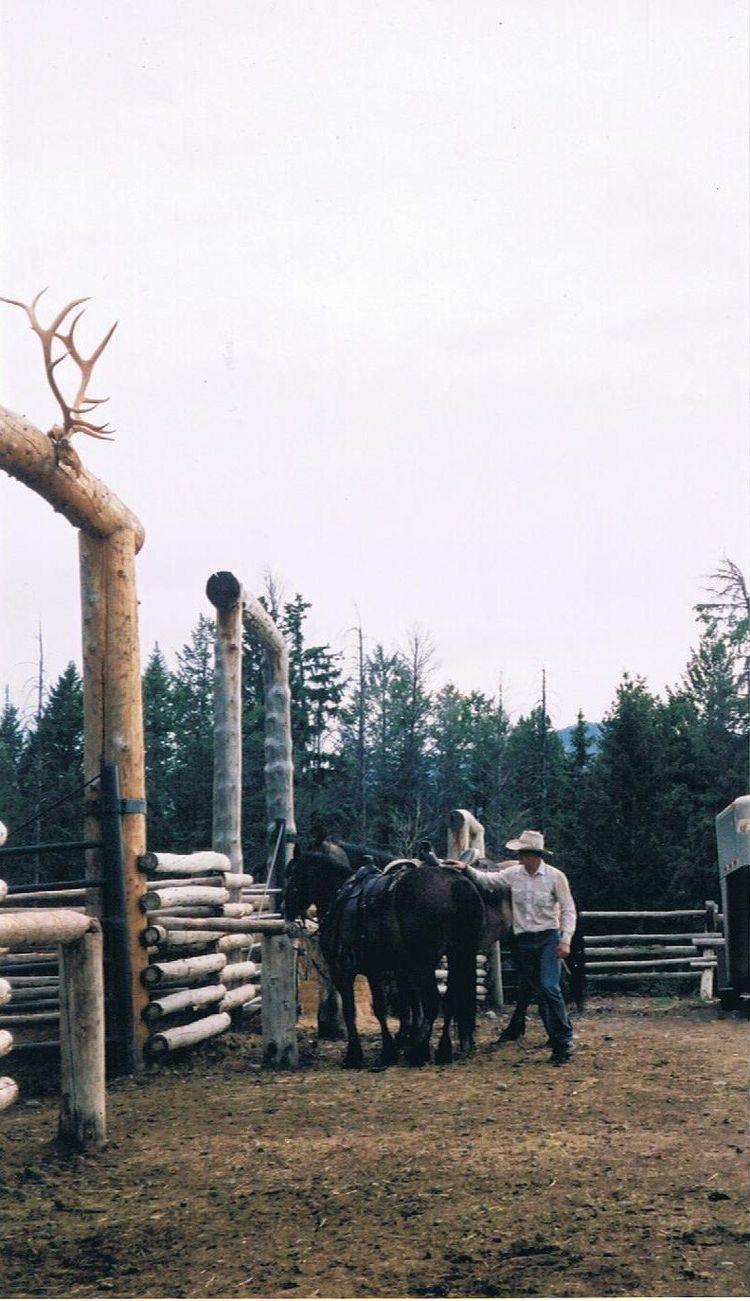(Photo Doris Diaz) <3 - horses - dorisdiaz | ello