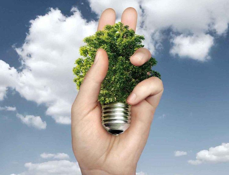 Equiinet Helps Businesses Green - iamfayegatewood | ello