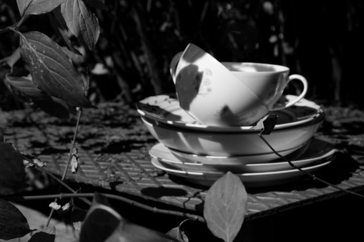 Darjeeling, darling - photography - marcushammerschmitt | ello