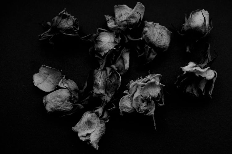 rigor mortis, 2018, Carla de So - carladesousa | ello