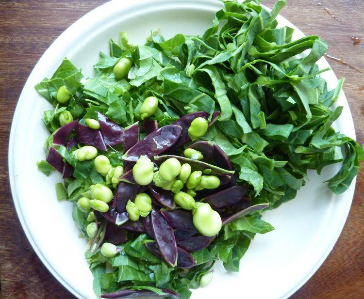Veg garden ... spring cabbage,  - firehorsetextiles | ello