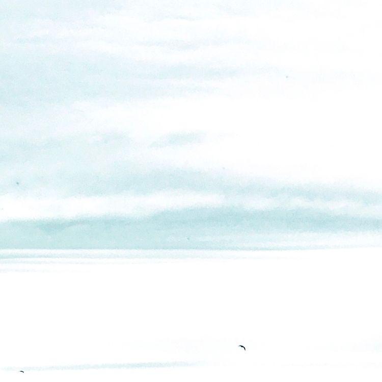 break clouds - bird, sky, outdoorlifestyle - yogiwod | ello