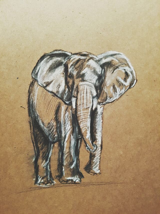 Quick sketch brown paper - nerdfinger | ello