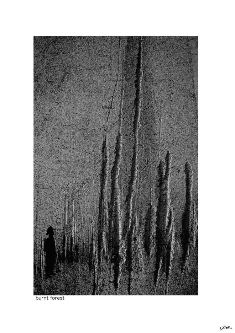 burnt forest 1 - serie Paesaggi - lalucetraisegni | ello