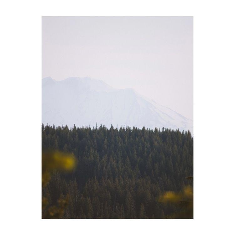 Mt. Adams glowing morning sun - ivankosovan | ello