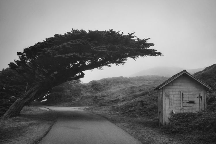 Imaginary friends - blackandwhitephotography - thephototypinglife | ello