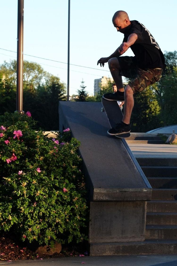 Skate Day 2018 JP Pouliot - Nos - brissphoto | ello