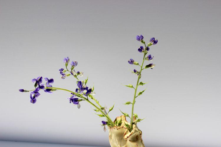 Handbuilt Vase, 2018|| Marissa  - ritzaart | ello