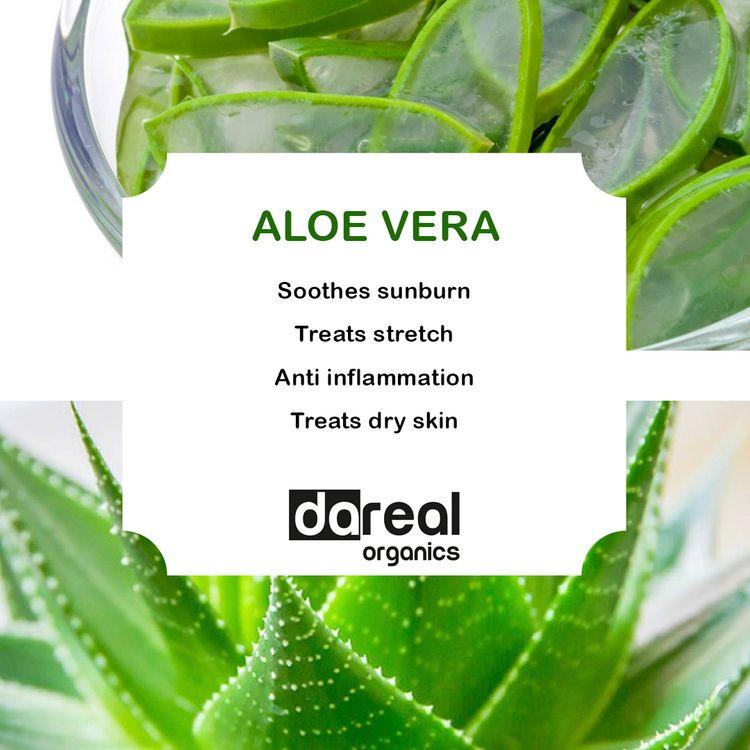 Benefits Aloe Vera Dareal Organ - darealorganics | ello