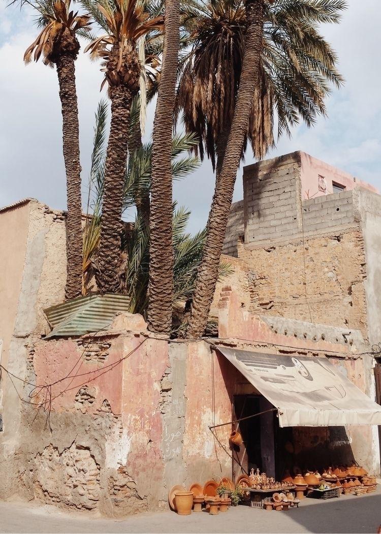 Marrakech - street, Marocco, palms - lapremioqueen | ello