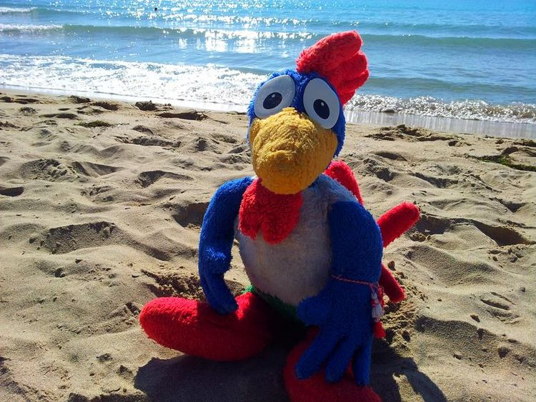 animals love - stuffed, summer, - rooster64 | ello