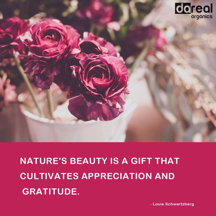 Nature displays beauty pure sta - darealorganics | ello