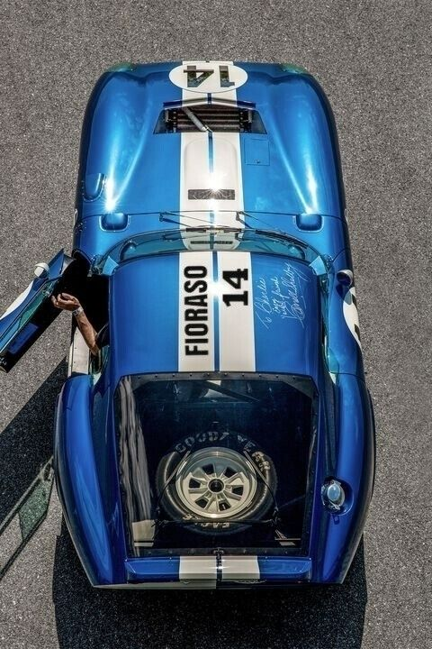 1964 - Shelby daytona coupé - fioraso_real | ello