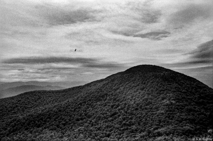 Image: Thomas Cole Mountain, 20 - sr-shilling   ello
