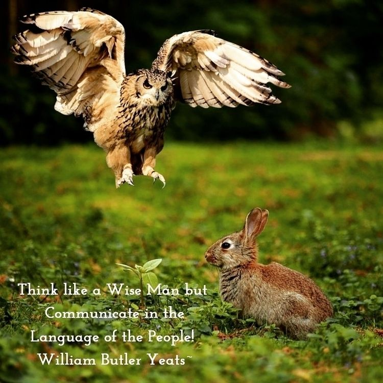 Wise Man ...:innocent: Communic - dare2bare | ello