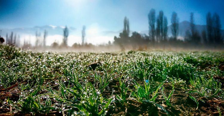 shines - winter, cold, drops, shining - jjackal | ello