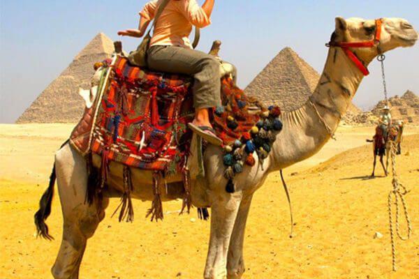 Egypt trip packages USA? Book U - deluxtoureg | ello