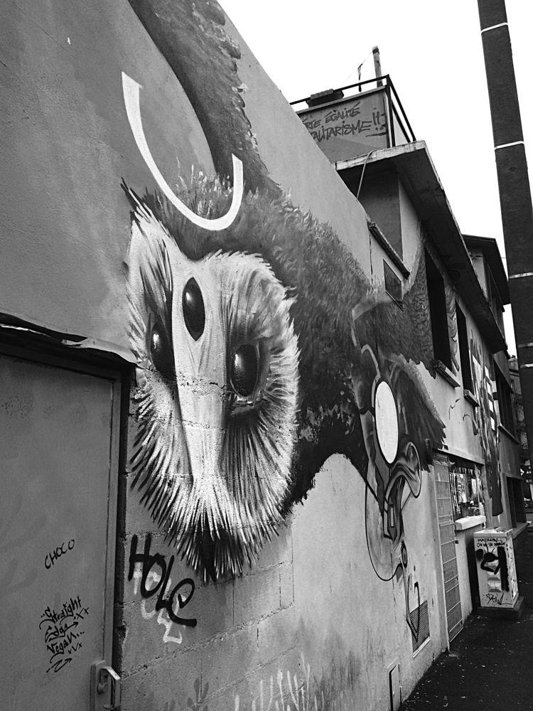 imagine night owl tonight, girl - jo-her | ello