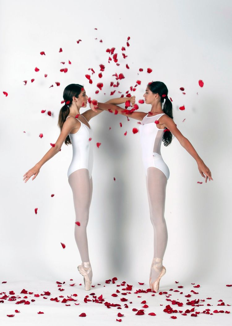 Rose-Rivalry - classicalballet, fineart - pashapasha | ello