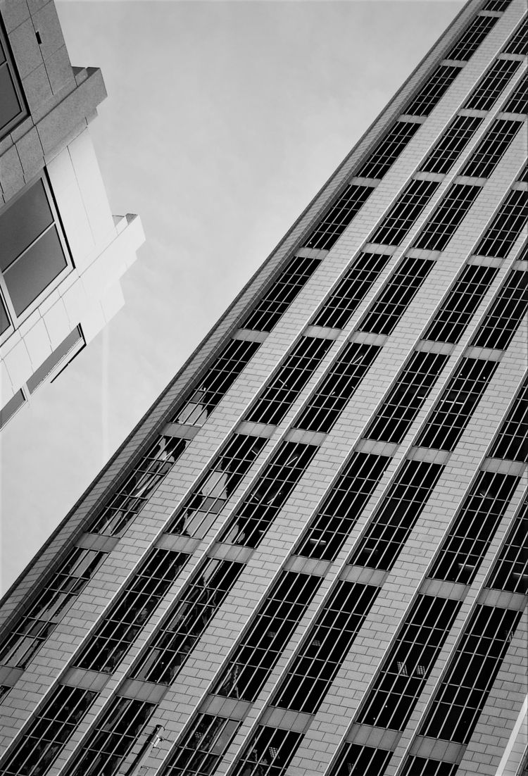 reflection, blackandwhite, architecture - drewsview74 | ello