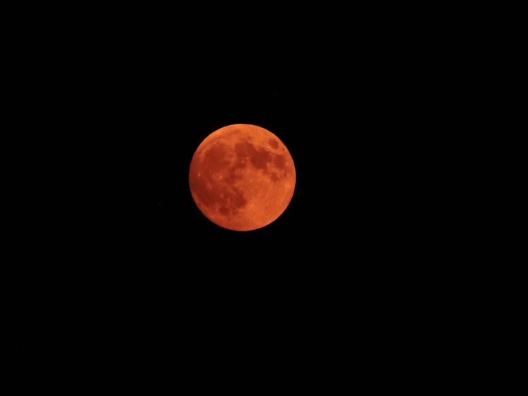 Blood Moon - bloodmoon, moonphase - thepieholephotography | ello