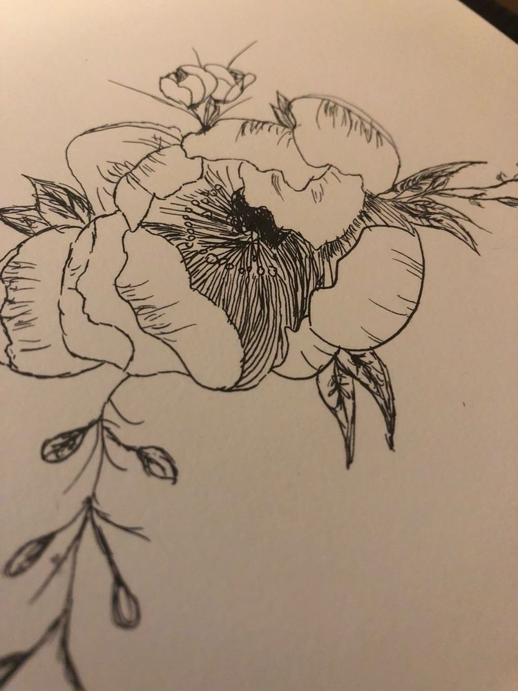 minute sketch - flower, peony, speeddrawing - silversparkler | ello