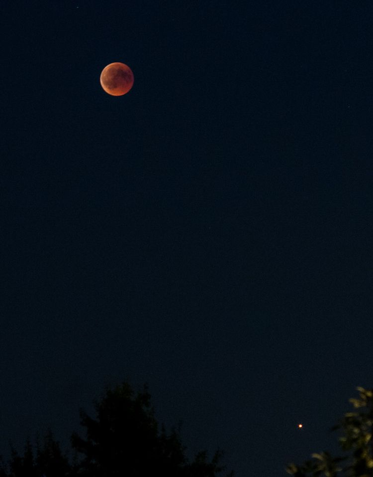 Moon Eclipse 2018 Friday night  - andretheelen | ello