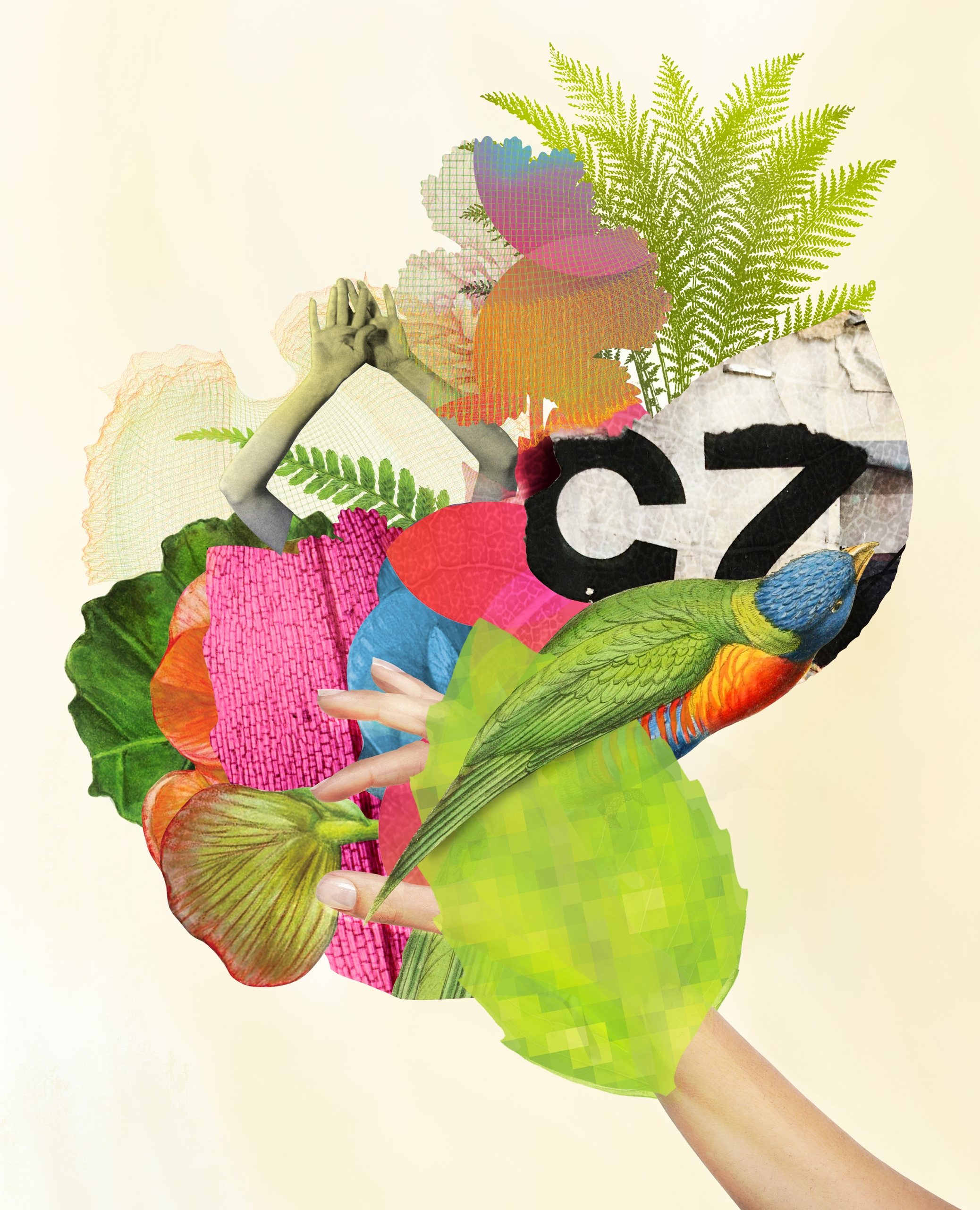 Forage 25 core nature nurture?  - craigcloutier | ello