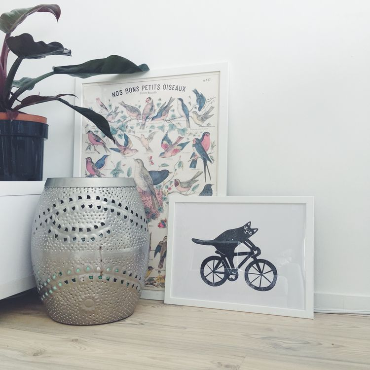 cat racing bike finally framed - studiomalu | ello