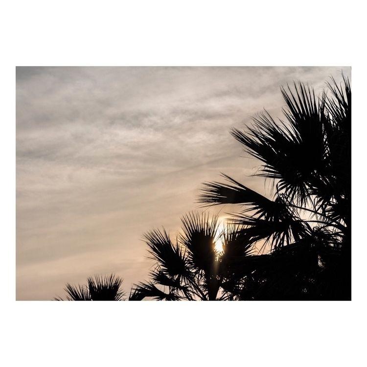 Summertime // jul. 18 - ello, minimal - micherlon | ello