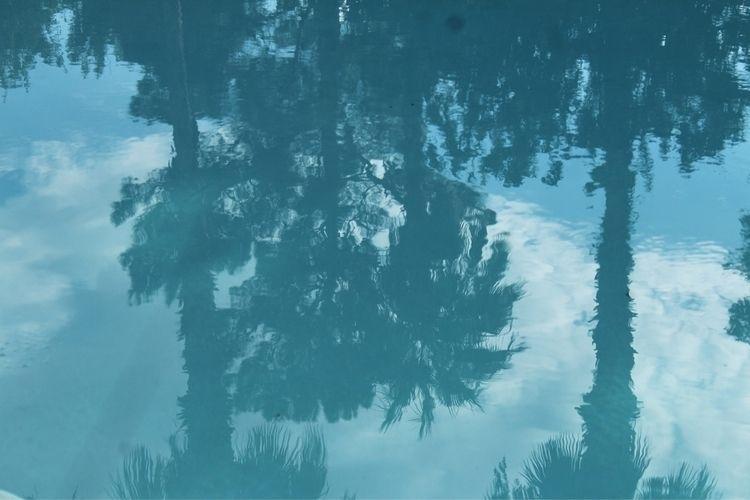 Understand reflection - jmhull | ello