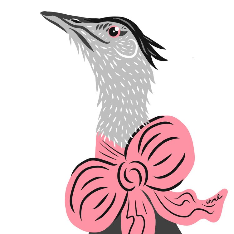 Number 103 Indian bustard, spec - emilynettie | ello