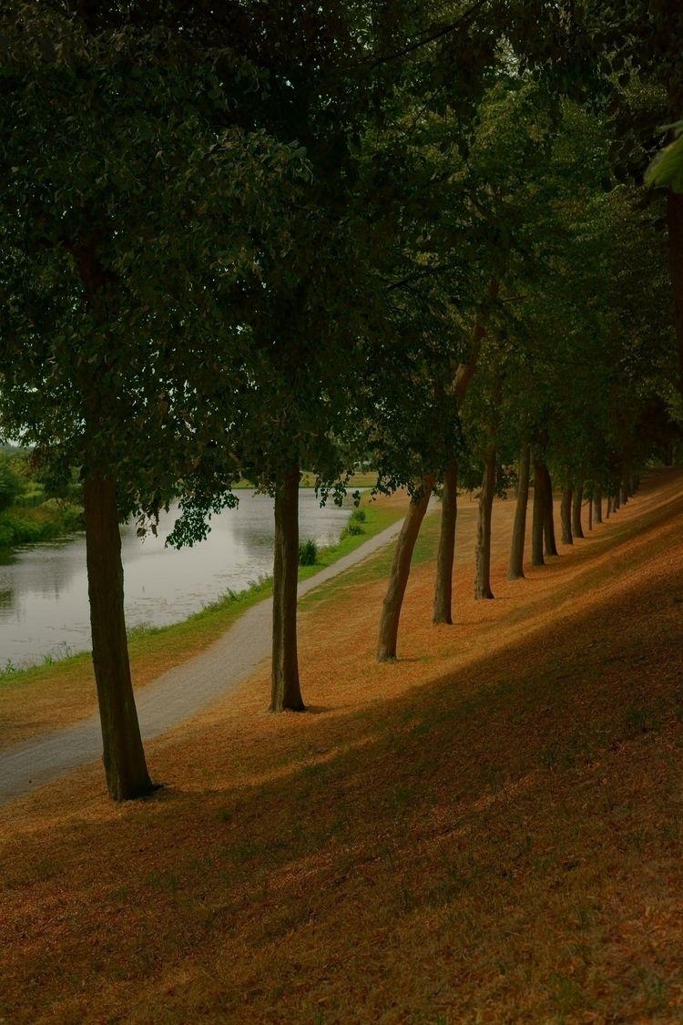 Row - landscape, water, netherlands - opdrie   ello