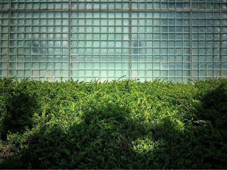 Lines Squares - urban, nature, manmade - davidhawkinsweeks | ello