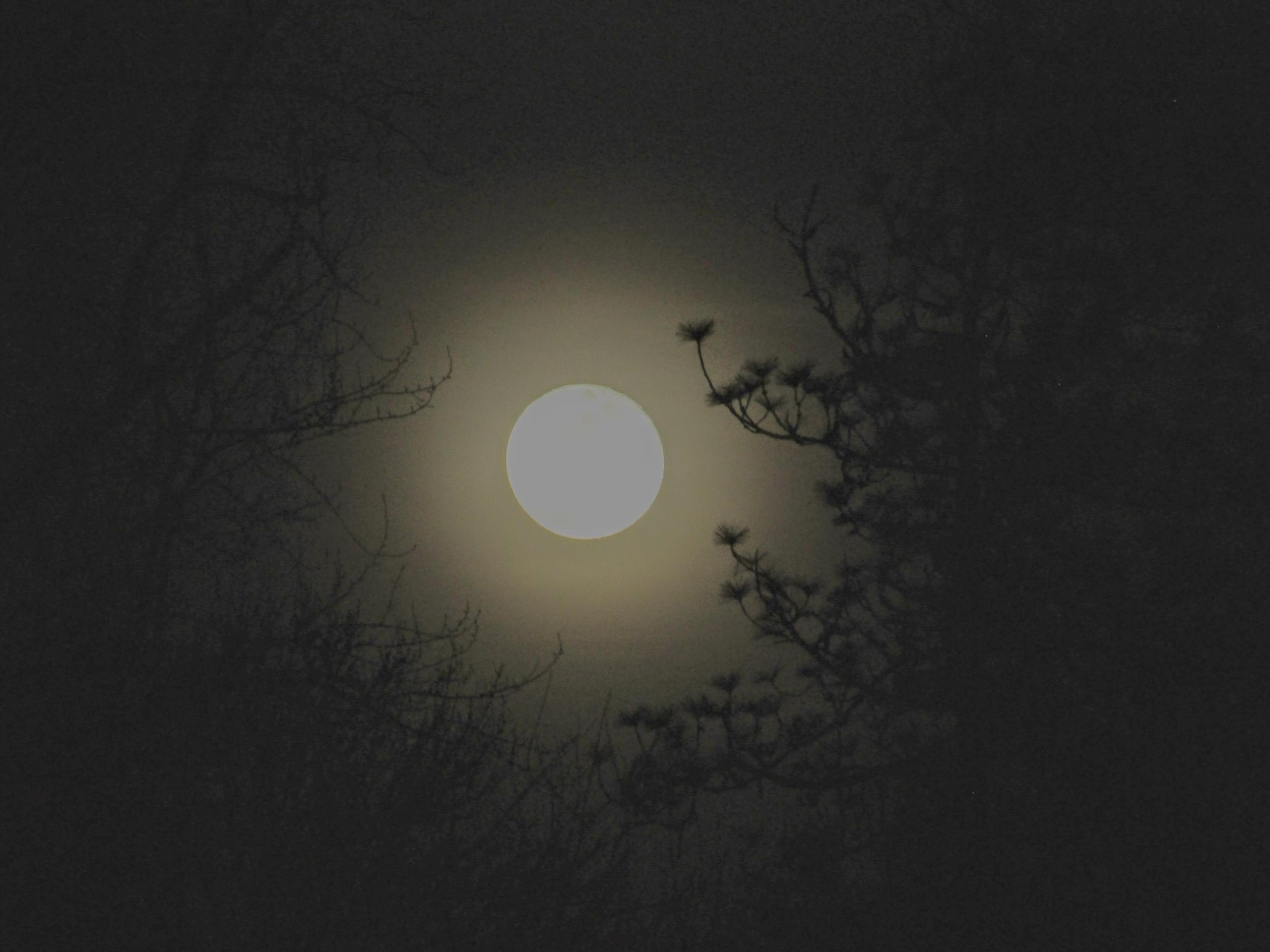 Spirit - moonscape - tehranchik | ello