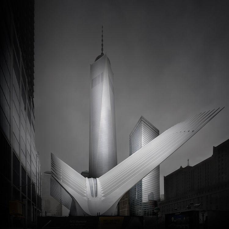 Olympus (Ground NY) - Freedom T - johnkosmopoulos | ello