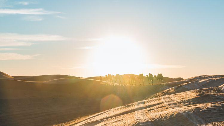 trek Marocco December. pic bivo - lowrabraco | ello