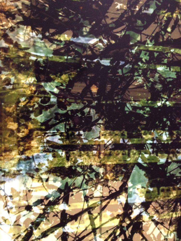printed dibond. blendcam. 2012  - miccaman | ello
